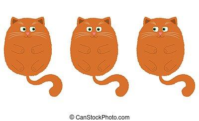 vetorial, style., 2, gato alaranjado, caricatura