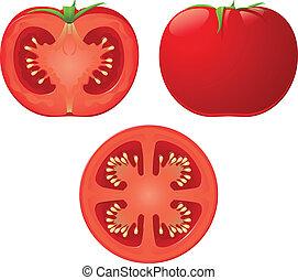 vetorial, tomate