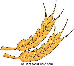 vetorial, trigo, orelhas