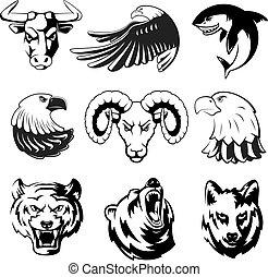 vetorial, tubarão, jogo, cabeças, pardo, grande, eagle., lobo, urso, ram., symbols., animais, labels., monocromático, ilustrações, logotipo, desporto, ou, mascotes