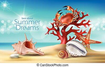 vetorial, turquesa, fundo, com, verão, praia arenosa, seashells, seixos, starfish, carangueijo, e, coral