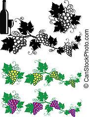 vetorial, videira, costas, uvas, folhas