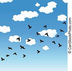 vetorial, voando, pássaros, e, nuvens, em, a, céu