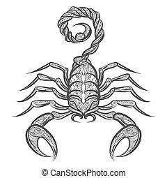 vetorial, zentangle, escorpião, ícone