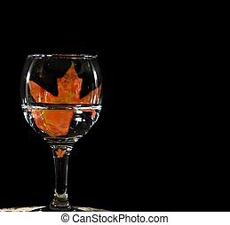vetro, foglia, acero, vino