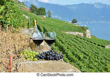 vetro vino rosso, su, il, terrazzo, vigneto, in, lavaux, regione, svizzera