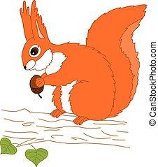 vettore, albero, scoiattolo, ghianda, seduta
