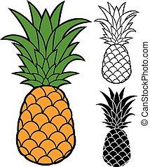 vettore, ananas