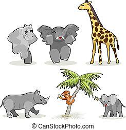 vettore, animali, africano