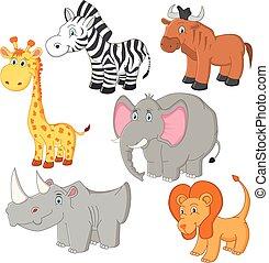vettore, animali, cartone animato, africano