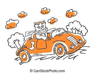 vettore, automobile., cartone animato, illustrazione, gatto