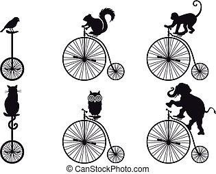 vettore, bicicletta, retro, animali