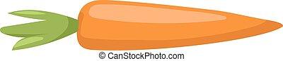 vettore, carota, illustration.