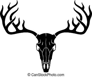 vettore, cervo, cranio, corna