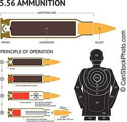 vettore, circa, pallottola, infographics, operation., ...