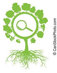 vettore, concetto, simbolo, albero, ricerca, ambientale, ecologia, sfondo verde, magnificatore, radici
