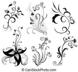 vettore, elementi, white.black, decorazione, grafico, floreale