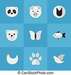 vettore, farfalla, moth, panda, icons., synonyms, cock., elementi, set, gatto, selvatico, semplice, orso, illustrazione