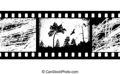 vettore, film macchina fotografica