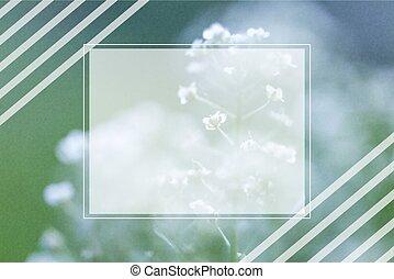 vettore, fiore, fondo