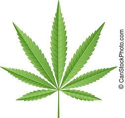 vettore, foglia, marijuana