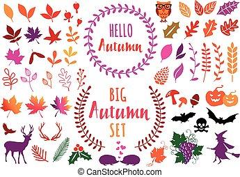 vettore, foglie, elementi, set, autunno, colorito, disegno