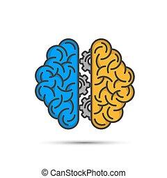 vettore, fondo., cervello, pensare, ingranaggio, bianco, illustrazione