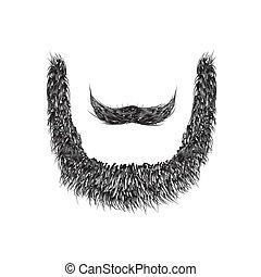 vettore, fondo, isolato, bianco, realistico, barba, illustration.