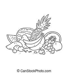 vettore, frutta, collezione