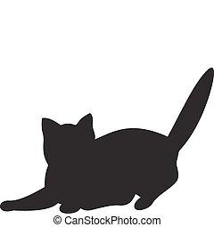 vettore, gatto
