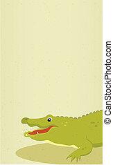 vettore, illustration., alligator.