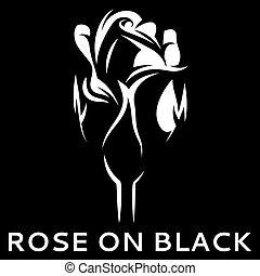 Rosa Bianco Vettore Sfondo Nero Vettore Illustratore Rosa