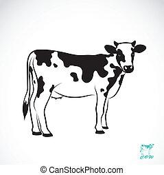 vettore, immagine, di, un, mucca