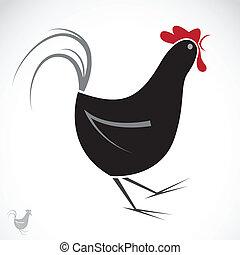 vettore, immagine, di, un, pollo