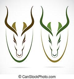 vettore, immagine, di, un, testa, impala