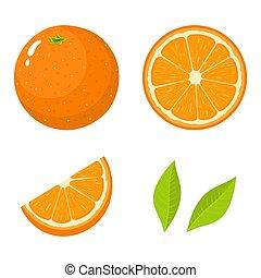 vettore, intero, set, organico, fondo., fruit., tangerine., isolato, illustrazione, qualsiasi, mezzo, taglio, frutta, fetta, arancia fresca, foglie, bianco, style., cartone animato, design.