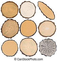 vettore, isolated., illustrazione, tessuto legno, elementi