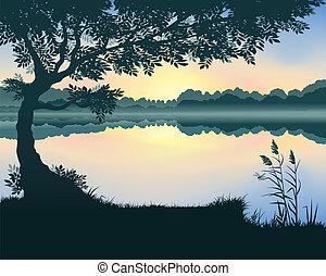 vettore, lago, illustrazione