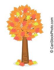 vettore, leaves., giallo, colorato, autunno, albero., illustrazione, rosso
