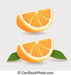 vettore, leaves., illustrazione, realistico, frutta, verde, fetta, arancia, fresco