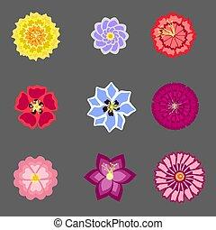 vettore, luminoso, set, fiori