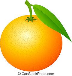 vettore, mandarine, icona
