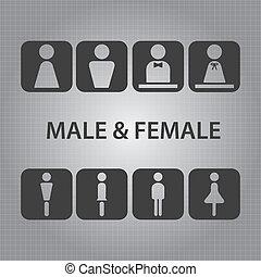 vettore, maschio, femmina, segni