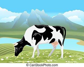 vettore, mucca, e, rurale, prato, paesaggio