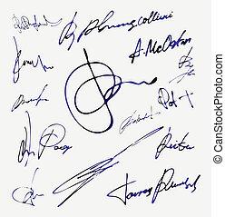 vettore, nome, autografo, firma