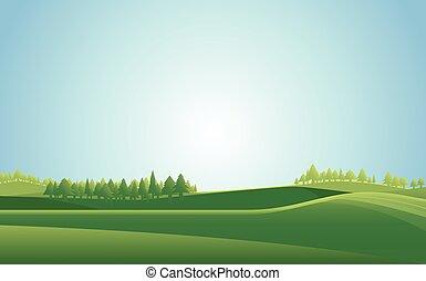 vettore, paesaggio, estate, fondo., illustration., prato
