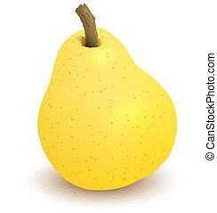 vettore, pera, giallo