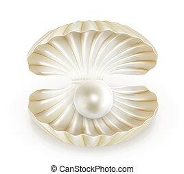 vettore, perla