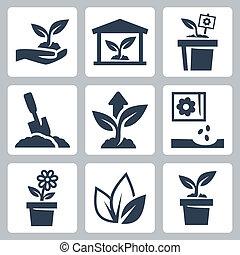vettore, pianta, crescente, icone, set
