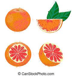 vettore, pompelmo, illustrazione, frutte